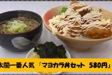 マヨカラ丼セット