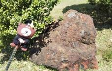 大隈庭園赤石