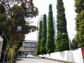 早稲田散歩7月号_180728_0018