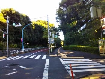 箱根山へ右に