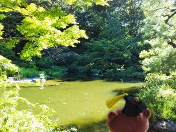 甘泉園公園上池1