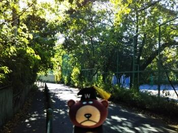 箱根山入り口へ向かう道