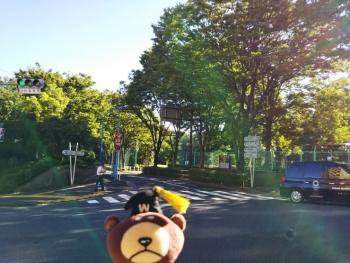 学館前交差点