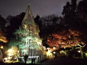 甘泉園公園5