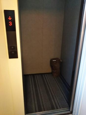 木組みエレベーター